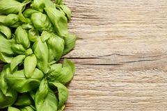Folhas da manjericão no fundo de madeira Imagem de Stock