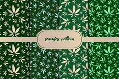 Folhas da marijuana Ajuste do fundo sem emenda das folhas na moda verdes Teste padr?o sem emenda das ?rvores de floresta nave ilustração stock