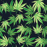 Folhas da marijuana do cannabis Teste padrão sem emenda Fundo da planta do vetor foto de stock