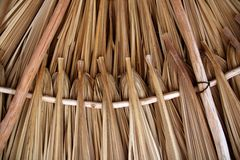 Folhas da palmeira na telhadura da cabana do palapa do sunroof Foto de Stock