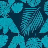 Folhas da palmeira, teste padrão sem emenda Fotografia de Stock Royalty Free