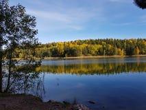 Folhas da reflexão do outono do lago Rösjön sweden Imagem de Stock