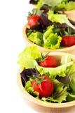 Folhas da salada e tomates de cereja frescos Fotos de Stock