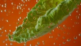 Folhas da salada na água carbonatada no fundo filme