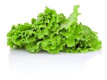 Folhas da salada verde isoladas no fundo branco foto de stock royalty free