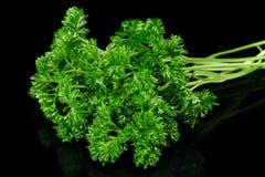Folhas da salsa isoladas no preto imagens de stock royalty free