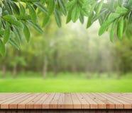 Folhas da tabela e do verde no fundo do jardim Imagem de Stock Royalty Free