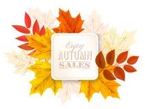 Folhas de Autumn Abstract Banner With Colorful Fotos de Stock