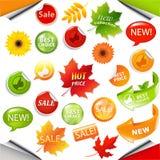 Folhas de Autumn Collection Sale Elements With Imagem de Stock