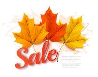 Folhas de Autumn Sales Banner With Colorful Fotos de Stock Royalty Free