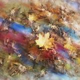 Folhas de bordo amarelas caídas no fundo abstrato colorido imagens de stock