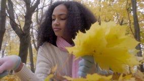 Folhas de bordo amarelas de coleta adolescentes pretas bonitas no ramalhete video estoque