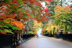 Folhas de bordo coloridas na vila do samurai de Kakunodate imagens de stock royalty free
