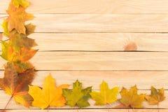 Folhas de bordo coloridas nas placas de madeira leves Fotos de Stock Royalty Free