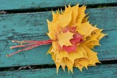 Folhas de bordo coloridas no outono em um banco colorido azul esverdeado no parque Imagem de Stock