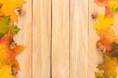 Folhas de bordo e bolotas coloridas nas placas de madeira leves Foto de Stock