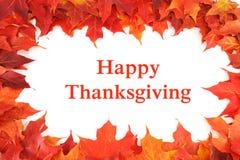 Folhas de bordo vermelhas do outono com ação de graças feliz do texto Fotografia de Stock