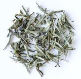 Folhas de chá brancas Foto de Stock Royalty Free