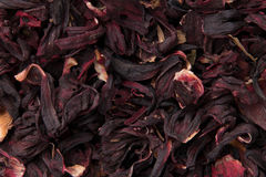 Folhas de chá de Carcade Imagem de Stock Royalty Free