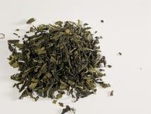 Folhas de chá verde Fotos de Stock