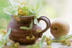 Folhas de chá verdes com abricó Fotografia de Stock Royalty Free