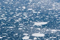 Folhas de gelo no oceano Fotografia de Stock Royalty Free