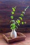 Folhas de hortelã da pimenta no fundo de madeira velho Imagens de Stock