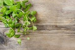 Folhas de hortelã na tabela de madeira Imagens de Stock Royalty Free