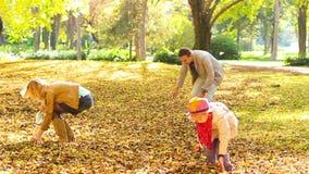 Folhas de jogo da família no ar. vídeos de arquivo