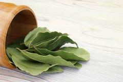 Folhas de louro aromáticas secadas em uma bacia de madeira na tabela rústica de madeira branca Foto da colheita da baía do louro  Imagem de Stock Royalty Free