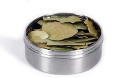 Folhas de louro na caixa do metal fotografia de stock royalty free