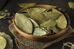 Folhas de louro secas orgânicas cruas Fotografia de Stock