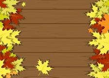 Folhas de madeira da textura Imagens de Stock