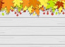 Folhas de madeira da textura Fotos de Stock