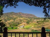 Folhas de madeira do balcão e do verde na frente do gre das montanhas do verão Imagem de Stock