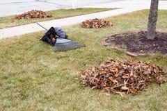 Folhas de outono ajuntadas em um gramado segado em um jardim Imagem de Stock Royalty Free