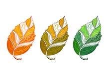 Folhas de outono ajustadas ilustração royalty free