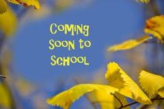 Folhas de outono amarelas contra o fundo do céu azul Lugar para a inscrição Vinda logo à escola imagens de stock