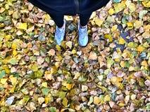Folhas de outono amarelas nos pés foto de stock royalty free