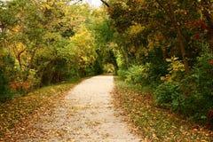 Folhas de outono ao longo da fuga da angra da pintura Foto de Stock