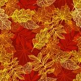 Folhas de outono coloridas ilustração stock