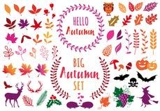 Folhas de outono coloridas, grupo de elementos do projeto do vetor Imagem de Stock