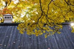 Folhas de outono coloridas no telhado de madeira da casa em um dia ensolarado imagem de stock