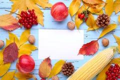 Folhas de outono com bagas e vegetais no azul Composição do outono com cartão imagem de stock royalty free
