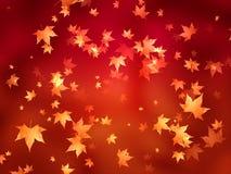 Folhas de outono douradas ilustração do vetor
