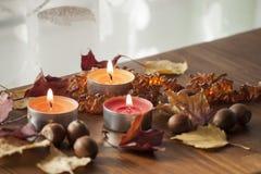 Folhas de outono e bolotas coloridas do carvalho vermelho do norte e da colar ambarina na placa de madeira Fotos de Stock