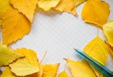 Folhas de outono e composição coloridas do outono da pena Espaço livre para o texto Foto de Stock