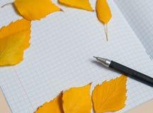 Folhas de outono e composição coloridas do outono da pena Espaço livre para o texto Fotos de Stock