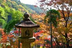 Folhas de outono e lanterna de pedra Kyoto, Japão Imagem de Stock