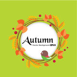 Folhas de outono em um fundo verde Fotos de Stock